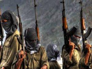 ÇOCUKLARINI PKK'YA GÖTÜRÜRKEN KAYSERİ'DE YAKALANDI