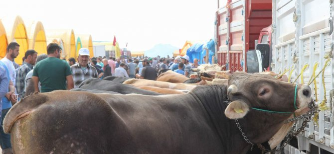 Kayseri 'de Kurban pazarı yoğunluğu