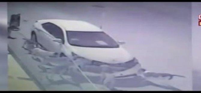 Arabayı parçalayan Elabaşı ve sokak köpekleri