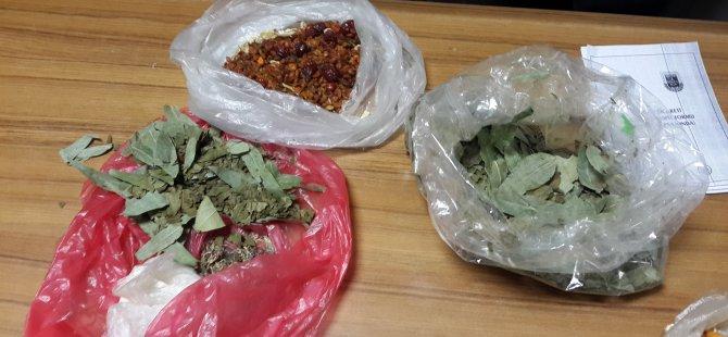 Kayseri'de Biokaçakçılık yapan bir Rus yakalandı