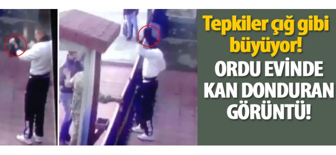Erzincan'da bir askerin yavru kediye yaptığı işkence-video