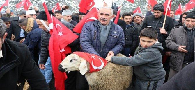 Kayseri'de Mehmetçikler için kurban kesildi