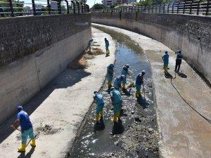 Kocasinan'da kanallar temizlenip, ilaçlanıyor