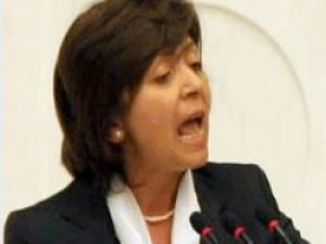 CHP Fena Karıştı