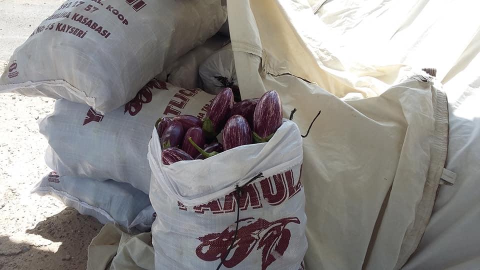 SS Yemliha Tarımsal Kooperatifi Başkanı İbrahim Ulusoy: Yamula Patlıcanı Satışları Başladı