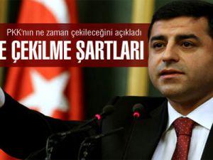 BDP Eş Genel Başkanı Demirtaş: