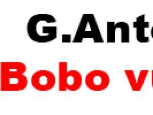 G.Antep'i  Bobo vurdu