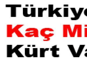 Türkiye'de Kaç Milyon Kürt Var?