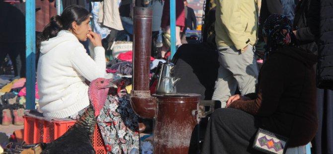Kayseri'de sabahın erken saatlerinde bit pazarına yoğun ilgi