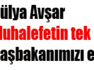 Hülya Avşar Muhalefetin tek işi Başbakanımızı eleştirmek