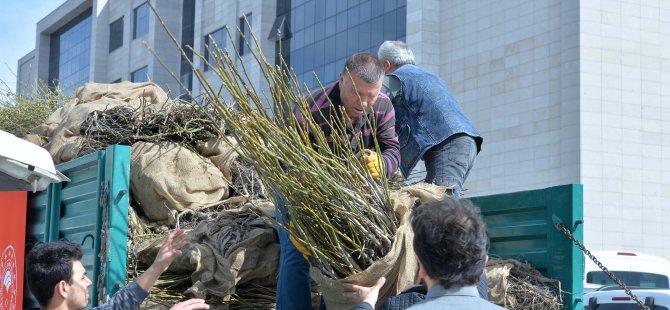 Kayseri İl Tarım ve Orman Müdürlüğü 47 bin fidan dağıttı