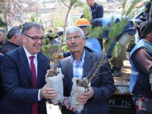 Hacılar'da yeşil bir çevre için 800 fidan dağıtıldı