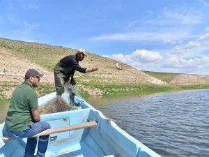 Yamula Barajı'ndan sahipsiz ağlar toplandı