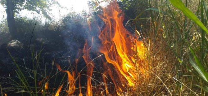 Develi'deki tarla yangınını itfaiye ekipleri söndürdü