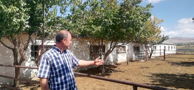 Talas'ta tek geçim kaynağı olan inekleri çalındı