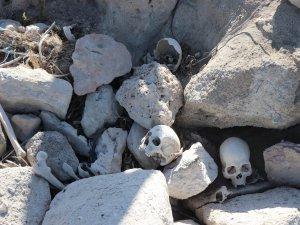 Yamula Barajı'ndan çıkan kafataslarını belediye ekipleri mezarlığa defnetti