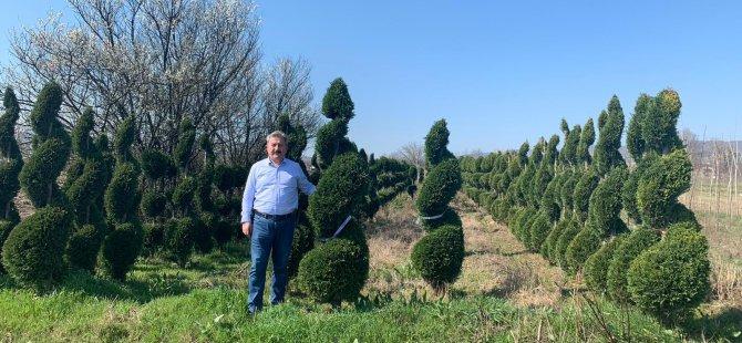 Başkan Palancıoğlu: vatandaşlarımızı ağaç dikmeye davet ediyorum