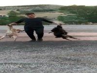 Sarız Yedioluk köyünde Besicinin hız ve alt geçit isyanı