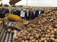 Kayseri Şeker Fabrikası C pancarı fiyatını açıkladı