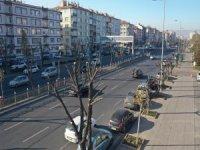 Kayseri Büyükşehir'den ağaçlara 'kış' bakımı