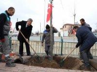 """Palancıoğlu: """"Daha yeşil bir Melikgazi için fidan değil ağaç diktik"""""""