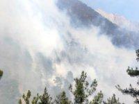 Yahyalı'da orman yangını