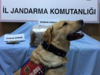 Kayseri'de uyuşturucu operasyonları