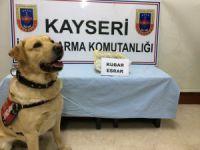 Kayseri'de Jandarmadan esrar operasyonu