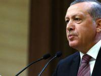 Cumhurbaşkanı Erdoğan: 'Evet sonrası partiye dönerim'