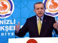 Cumhurbaşkanı Erdoğan: O da size Nazi diyecek