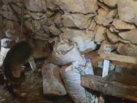 Kayseri'de uyuşturucu operasyonu 3 kişi gözaltına alındı