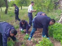 Hacılar Beğendik Mahallesi'nde uyuşturucu operasyonu: 2 gözaltı