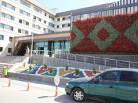 Melikgazi Belediyesi'nden duvarlara çiçek panosu