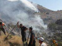 Yılanlı Dağı'nda çıkan yangın