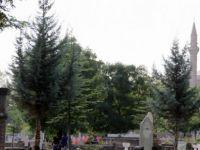 Kayseri'de Mezarlıkta kendini ağaca astı