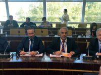 Başkan Palancıoğlu, Avrupa Konseyi'nde Türkiye'nin sesi oldu