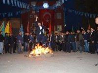 Ülkü Ocakları'ndan Nevruz etkinliği