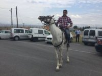 Melikgazi Tavlusun'da Oy kullanmaya at üzerinde geldi