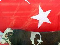 Kayseri'de doğuştan ay ve yıldız olan Cesur