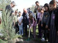 Kocasinan Belediyesi tarafından Erkilet Camikebir Mahallesi'nde 182 fidan