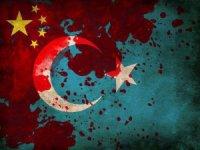 Doğu Türkistanlı Mahkum, Beni Çin'e Vermeyin Dedi