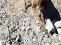 Kayseri'de toprak altında uyuşturucu bulundu
