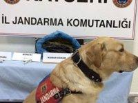 Esrar ile yakalanan sanık: Jandarma ile birlikte çalışıyoruz