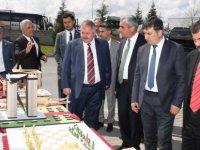 OSB Teknik Koleji Kütüphanesi'nin Açılışı ve 2019 Bahar Şenlikleri