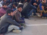 Afgan ve Pakistan uyruklu 21 kaçak göçmen yakalandı