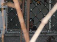 Yenimahalle'de Evde kilitli kalan çocuğu komşuları kurtardı