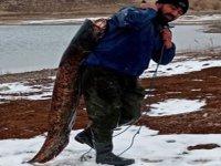 2 metre uzunluğunda 38.kilo ağırlığında balık yakaladı