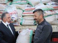 Talas'tan çiftçiye tohum desteği
